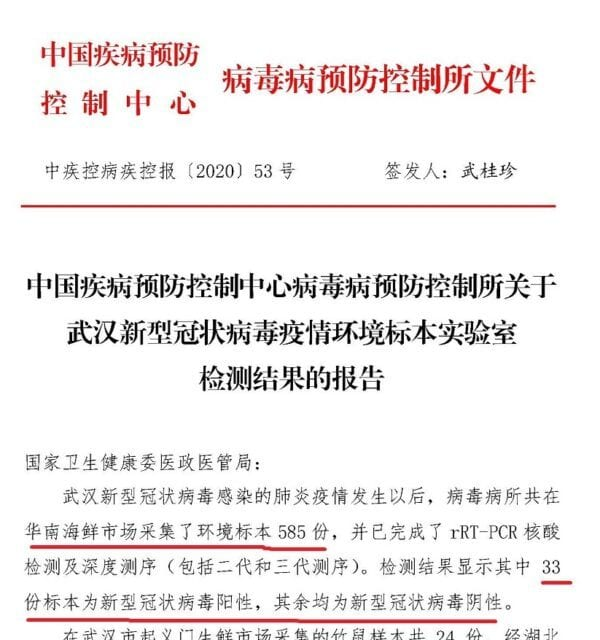 China's Official Narrative on Wuhan Wet Market Contradicted simply by Leaked Document