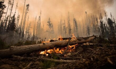 College of B. C. Research Warns Wildfire Smoke Might make COVID-19 Symptoms Worse