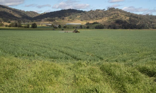 Aussie Farmers Want Economic Recuperation to Go Rural