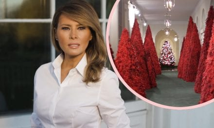 Melania Trump Trashes Christmas and Migrant Children In Privately Recorded Audio