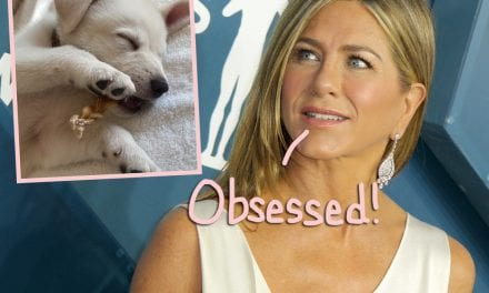 Jennifer Aniston's New Puppy Is The Sexiest Thing EVER!