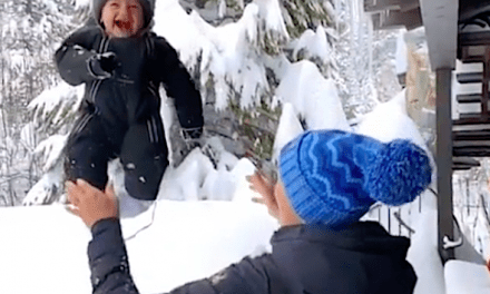 Olympic Skier Julia Mancuso Obtained Shit Over A Video Associated with Her Throwing Her Child Into A Snow Bank
